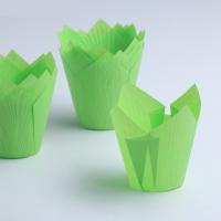 Бумажная капсула Тюльпан Зеленый 10 шт