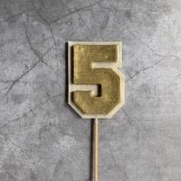 Топпер шоколадная цифра 5